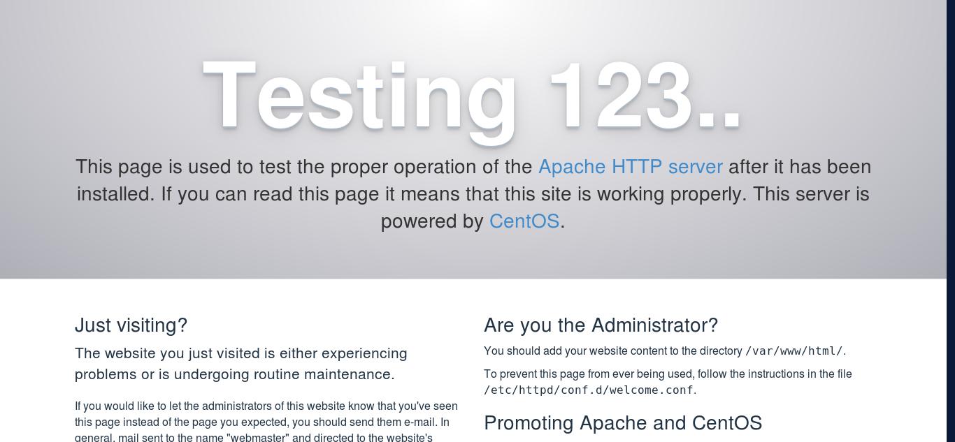 3.- Checking web server