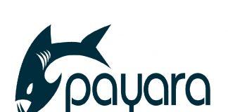 Payara Server
