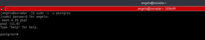 8.- PostgreSQL log in