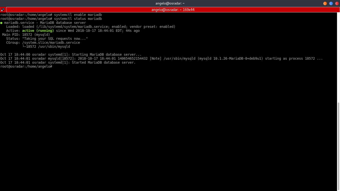 9.- MariaDB service status