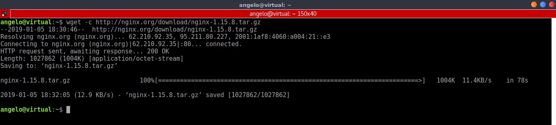 3.- Downloading Nginx source code