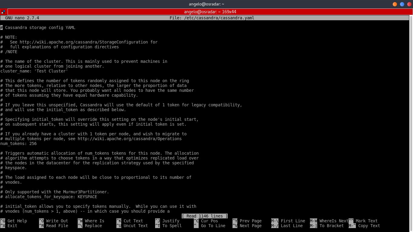 6.- The cassandra file configuration