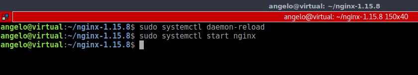 9.- Start Nginx service