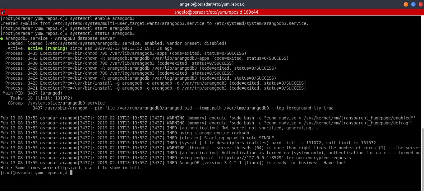 4.- Check the ArangoDB status