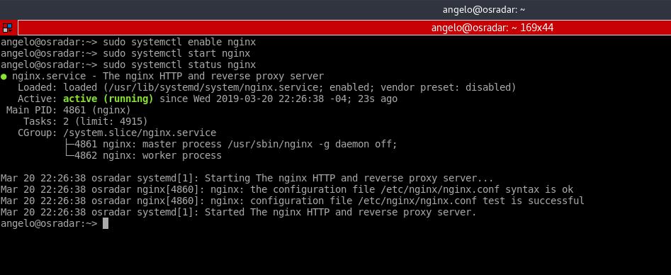 4.- The Nginx service