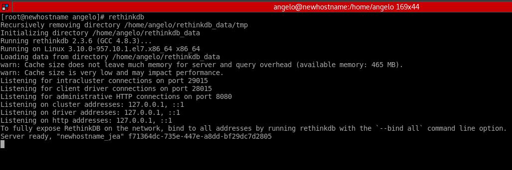 6.- Start the RethinkDB server