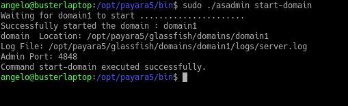 1.- Starting Payara Server on Debian 10