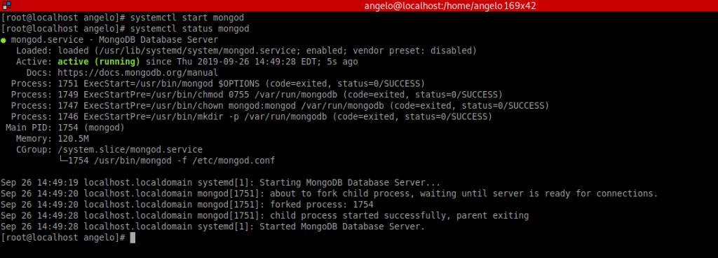 3.- The MongoDB service status
