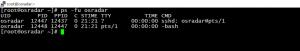 kill process in Linux