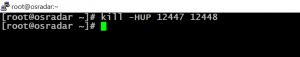 kill user in Linux