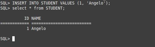 7.- Using Firebird on Ubuntu 20.04 / 18.04
