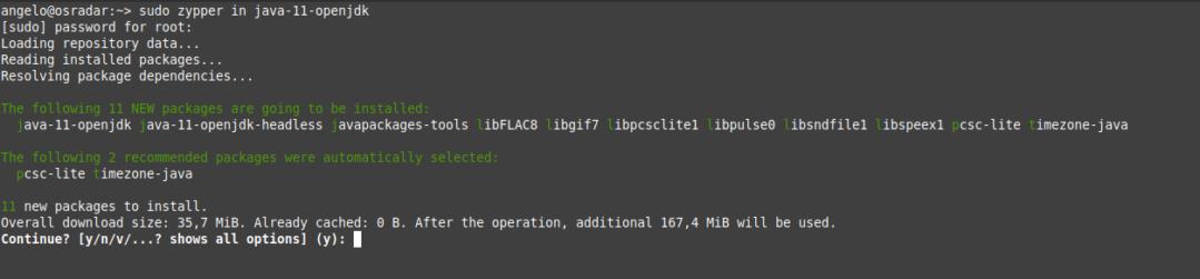 2.- Install Java on OpenSUSE 15.2 / 15.1
