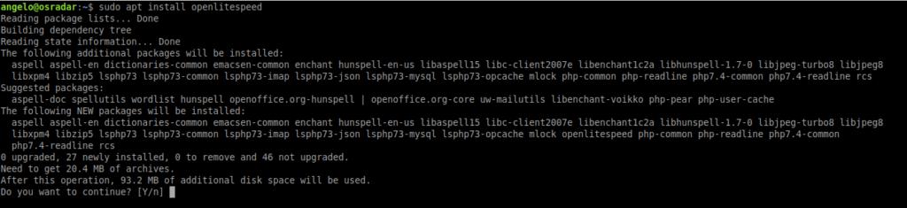 2.- Installing OpenLiteSpeed on Ubuntu 20.04 / Debian 10