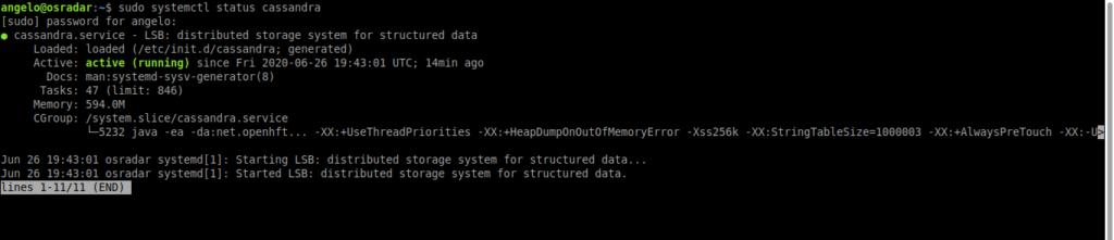 2.- Apache Cassandra service status