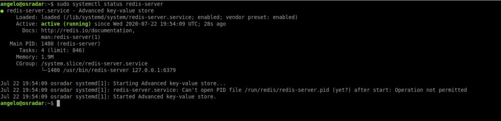 2.- Redis service status