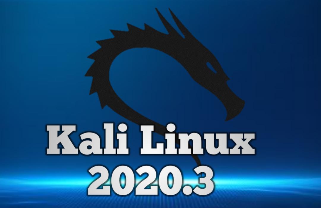 Kali Linux 2020.3