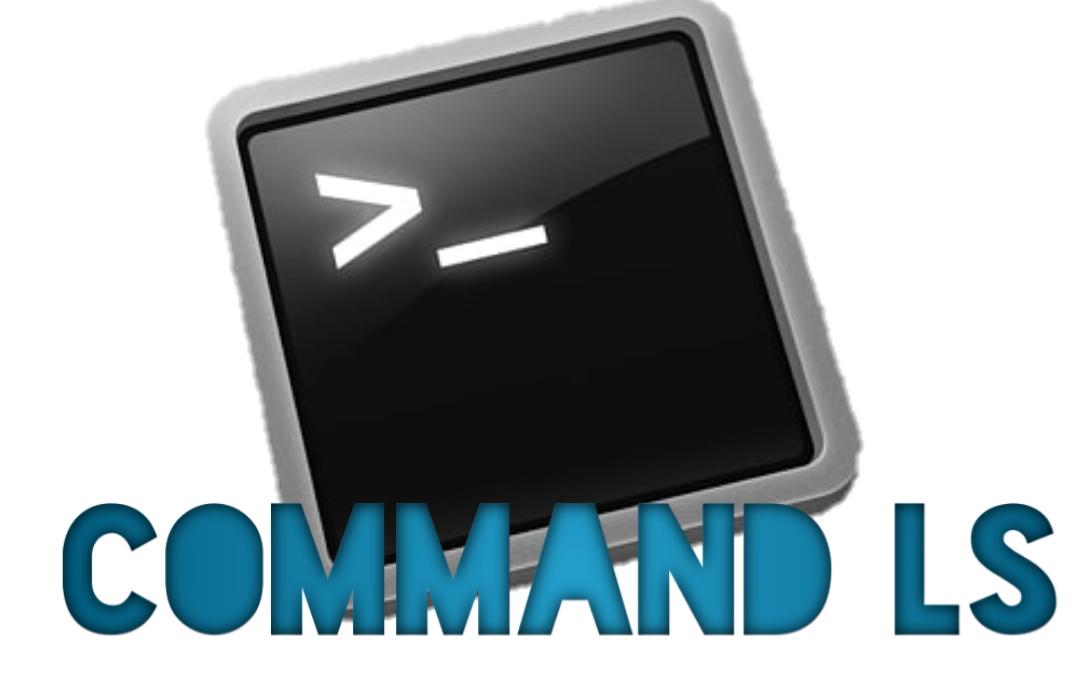 command ls