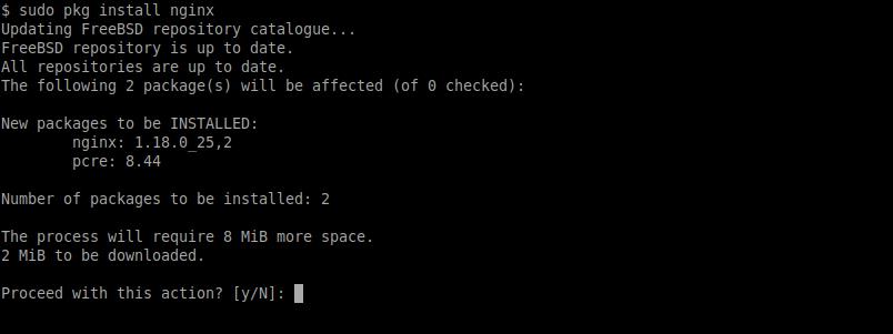 1.- Install Nginx on FreeBSD