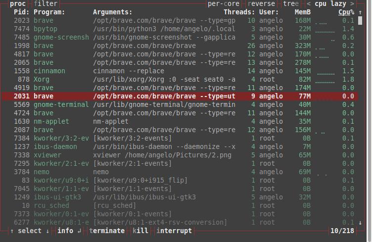 5.- Terminating a program with Bpytop