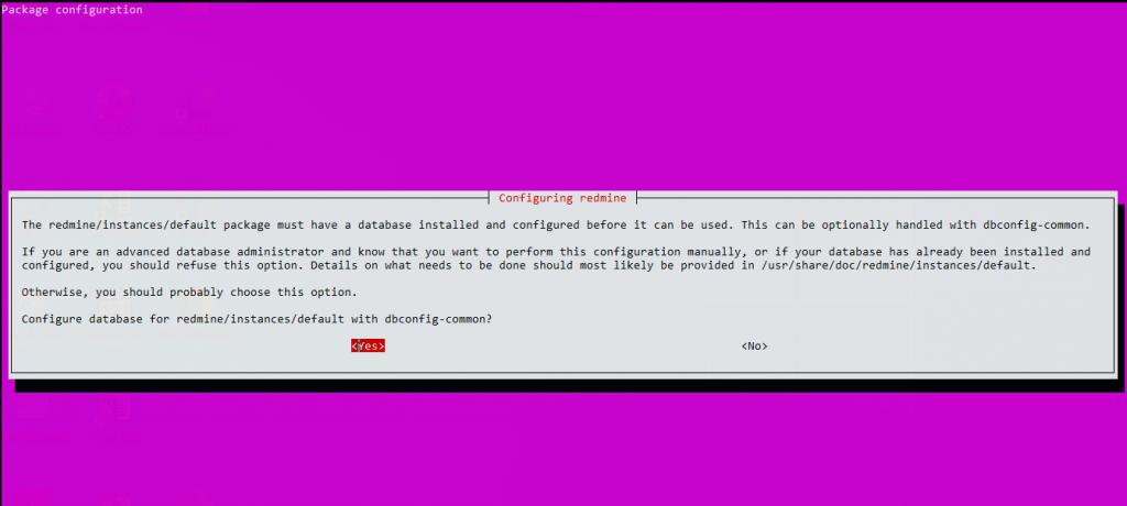 1.- Installing Redmine on Ubuntu 20.04
